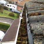 moss in gutters
